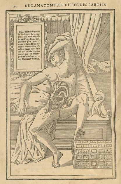 La dissection des parties du corps humain, p. 310