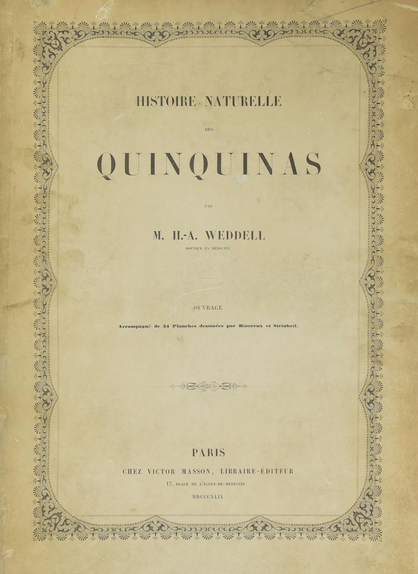 Quinquina 2 - 1