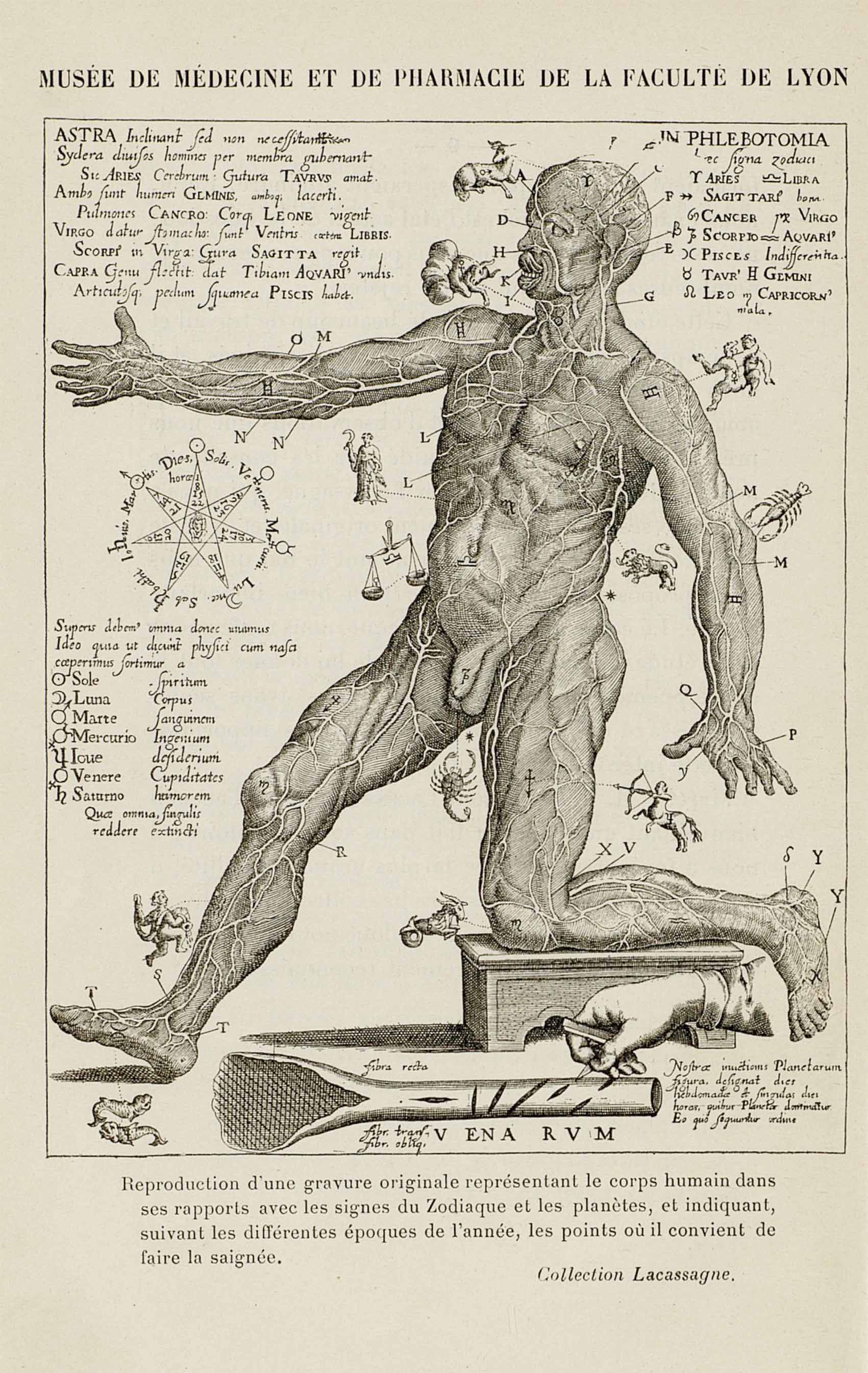 La médecine astrologique