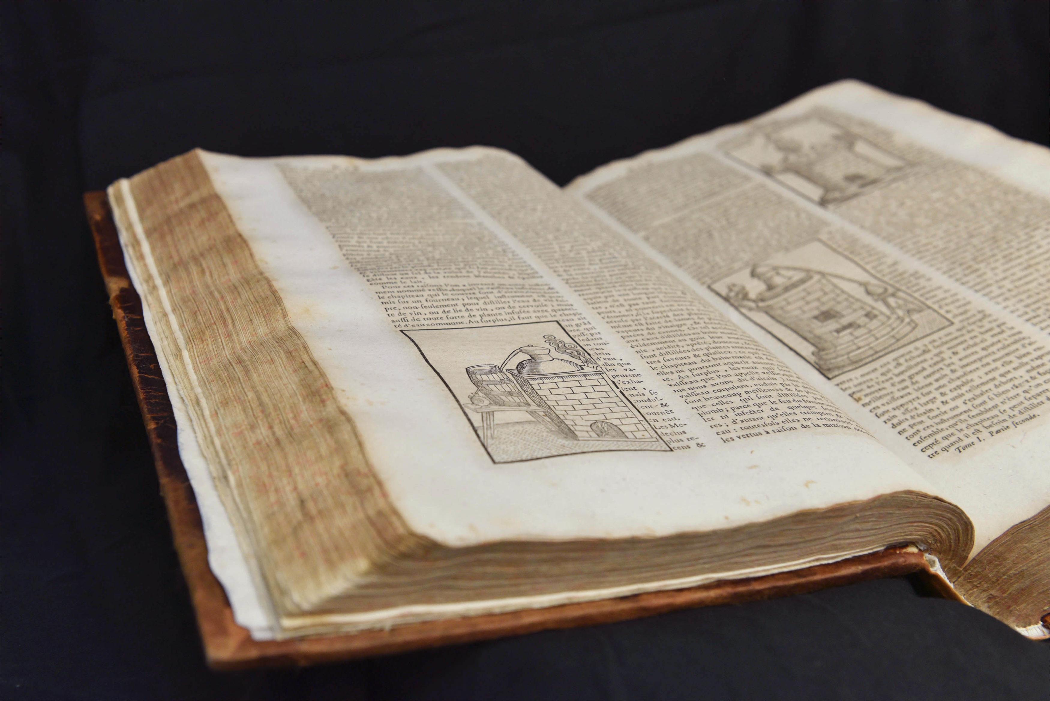 Dictionnaire Oeconomique - 45-1