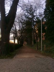 Foto0143