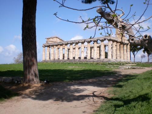 Templo en Paestum