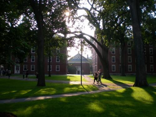 Harvard yard al atardecer