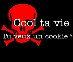 cool-ta-vie-love-tu-veux-un-cookie-132256383027