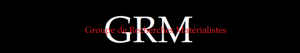 copy-cropped-cropped-GRM-Logo-site2.png