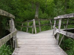 Pont de bois se divisant en deux.