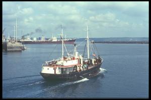 Le Job Ha Zelian dans le port de La Rochelle en 1973. Credit Photo : Jacques Servain