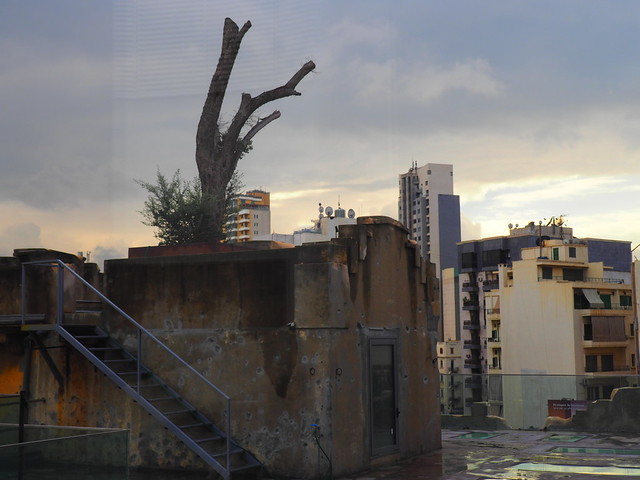 """Terrasse de Beit Beirut """"La maison jaune"""", Beyrouth"""
