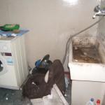 2006_0531Image0008