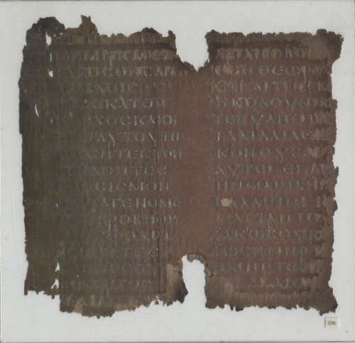 Beratinus 1 (Phi.043) Plexiglas n°108
