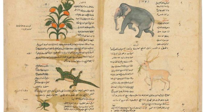 à propos d'un manuscrit arabe de Dioscoride vendu en 2016