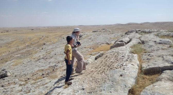 Inscriptions  syriaques de Turquie : résultats de la première mission de prospection