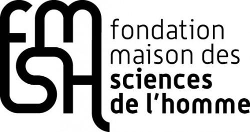 logo fmsh