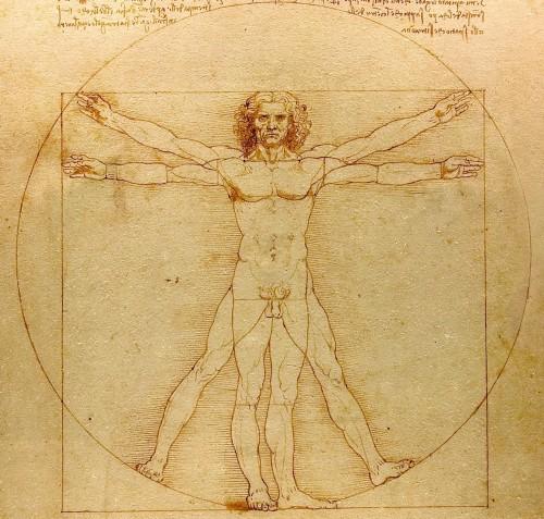 L'Homme de Vitruve, Plume, encre et lavis sur papier Léonard de Vinci. Photo CC from www.lucnix.be. 2007-09-08