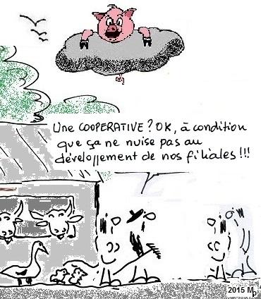 CCOP 1