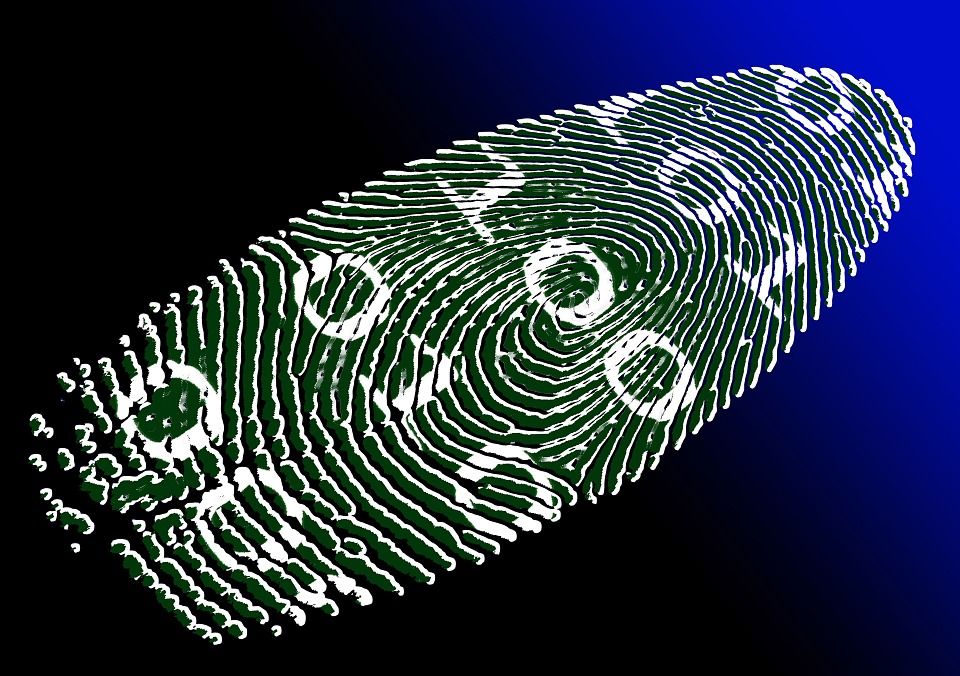 virtual-identity-69996_960_720