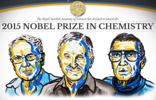 Nobelprize.org. Détail de l'affiche 2015 Nobel Prize in chemistry