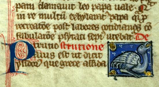 Thomas de Cantimpré, Liber de natura rerum, circa 1285. Valenciennes, Bibl. Mun., ms. 320, f. 108. Creative Commons IRHT