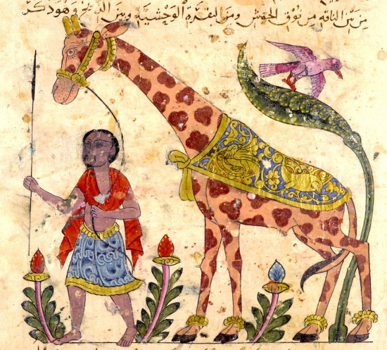 Al-Ǧāḥiẓ, Kitāb al-ḥayawān (Book of the animals) Syria, 15th C. Milan, Biblioteca Ambrosiana, Ms. arab. B 54, f. 36