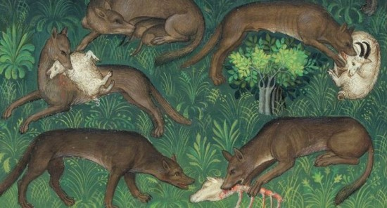 Medieval-Hunt images-Wolves