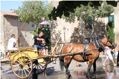 Bague en boghei de Gémenos, photographie de Sophie Tendero (30 juillet 2012)