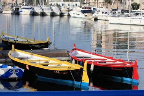Les barques de rames traditionnelles, photographie du site www.rameursvenitiens.com