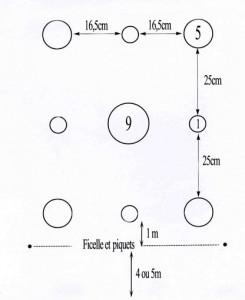 Schéma de la disposition des quilles, fourni par la Confédération FALSAB
