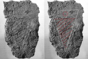 Malta fragment found by excavations in the Exedra of the Crypta Balbi and bearing the arms of Giacomo di Napoleone Orsini.