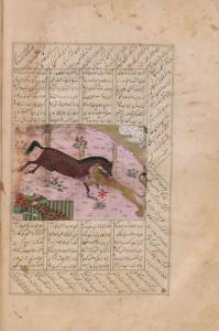 Il destriero Raxš combatte il leone, in difesa di Rustam dormiente (Naz.-II.III.10, f. 43v)
