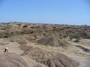 La formation de Shungura / The Shungura formation