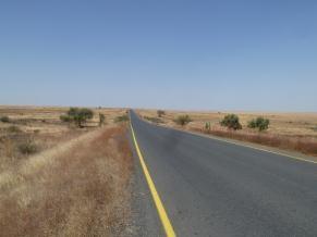 Fig. 4. Highway through Awash National Park and Allideghi Wildlife Reserve (© R. Moreaux)