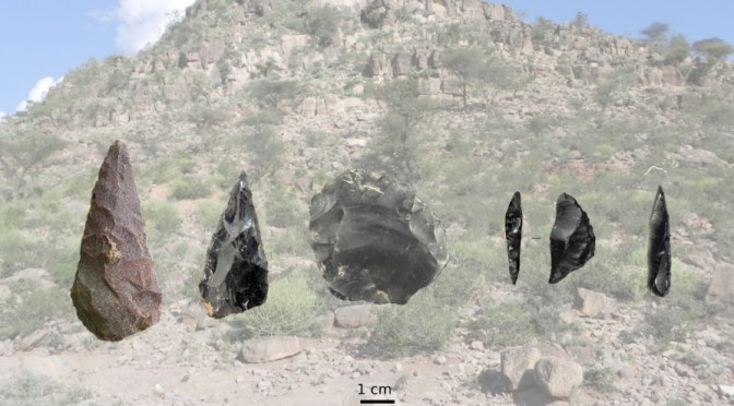 The Middle and Late Stone Age of south-eastern Ethiopia