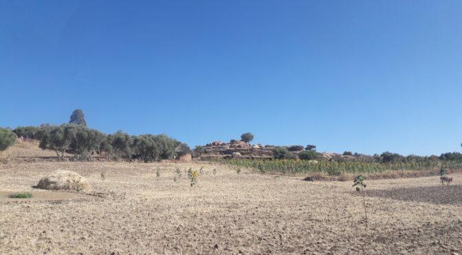 TERRAIN / FIELDWORK: Sekota, l'Ethiopie rurale en transition