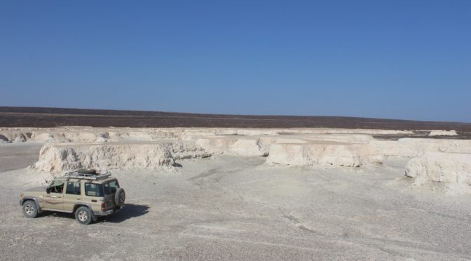 Human-Climate coevolution in the Lake Abhe paleobasin