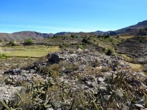 Site de Korojollo - Région de Tacna