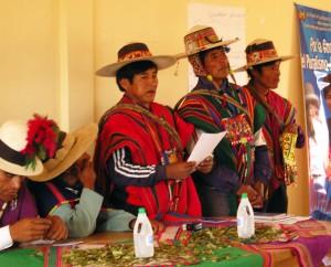 bolivia-pluralismo