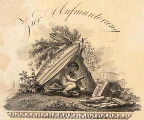 Abb. Zeugnis der Bürgerschule [in Leipzig] für Wilhelmine Hoffmann, 1807 [Ausschnitt] , Stadtgeschichtliches Museum Leipzig, Inv.-Nr. Dipl.CIII/3, CC BY-NC-SA 3.0 DE.