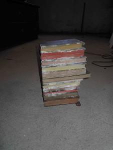 Starker oberflächlicher Schimmelbefall an Büchern, die direkt an einer Wand standen