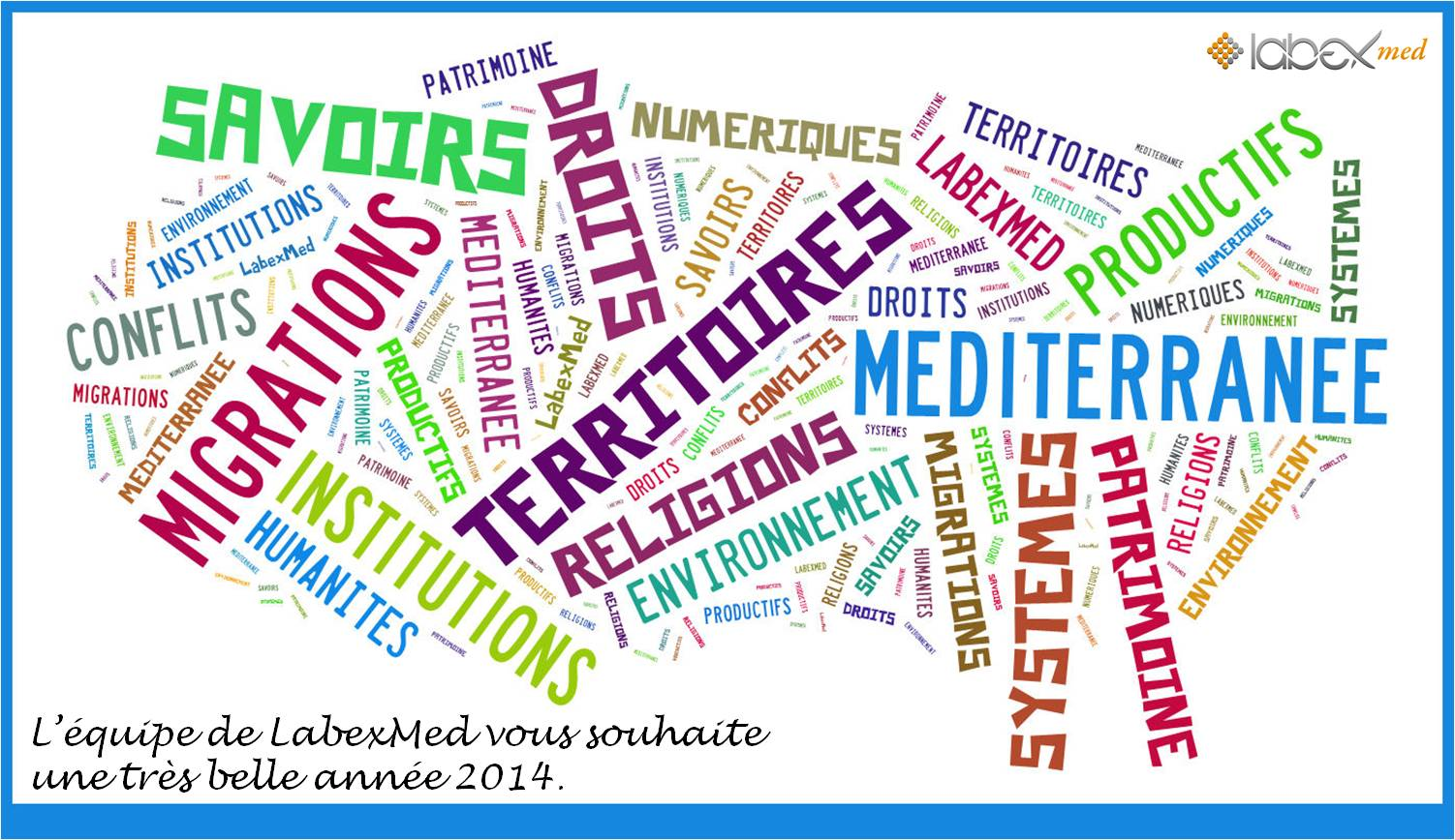 Voeux2014LabexMed
