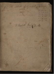 Wellcome MS 169, Image 3