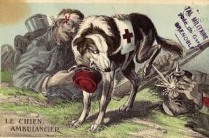 """Carte postale française représentant un chien sanitaire """"patriote"""""""