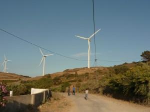 éoliennes de la STEG dans le village d'El Alia près de Bizerte