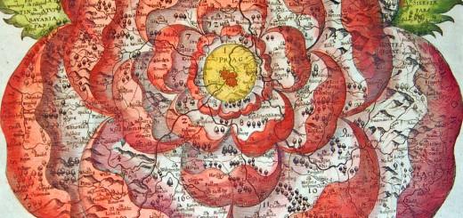 Rose of Bohemia, by Chr. Vetter, 1668
