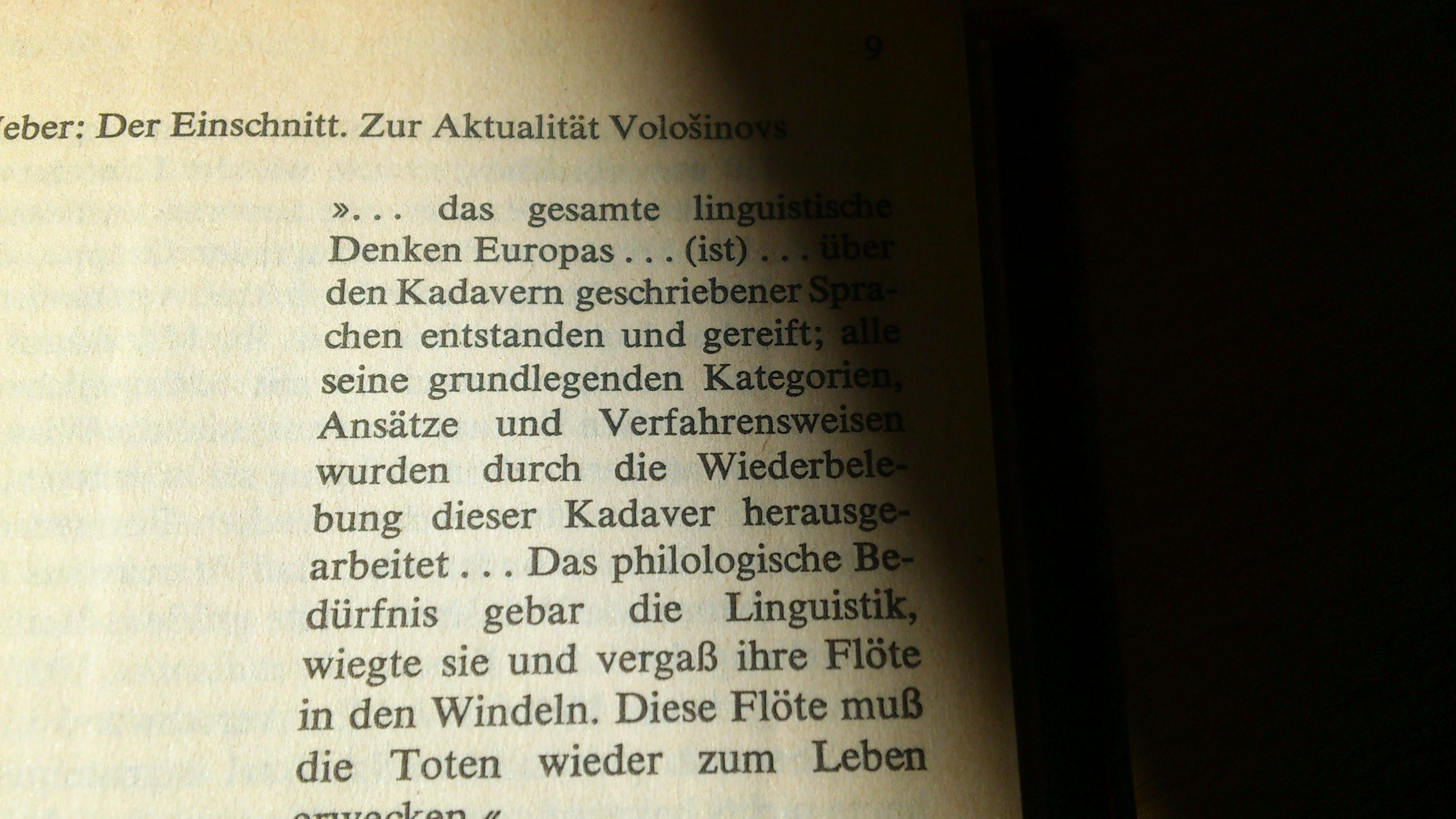 Валенти́н Никола́евич Воло́шинов: Марксизм и философия языка, Ленинград: Прибой, 1930