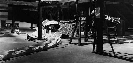 Bestand: Pal.Mus, Signatur: B III/32, Foto, Vormontage auf dem Dachboden, Vorderansicht des Skelettes mit Hals