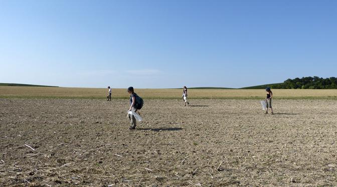 Prospections pédestres dans les marais de Saint-Gond (Marne)