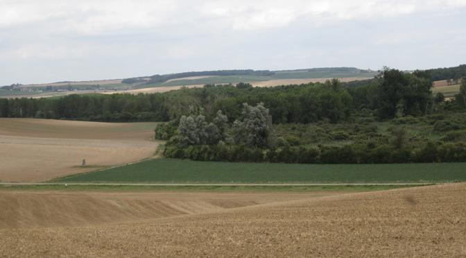 Etudes spatiales de l'occupation néolithique des marais de Saint-Gond : les communes de Villevenard, Congy et Courjeonnet (Marne, France)