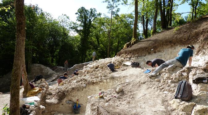 Les occupations néolithiques des marais de Saint-Gond (Marne). Fouilles et prospections