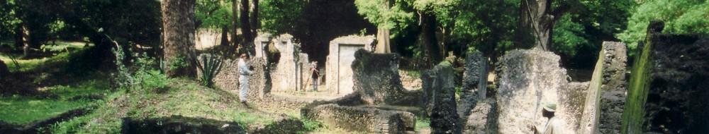 Swahili History & Archaeology