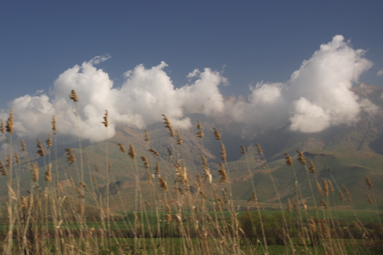 Nuages et champ de blé, Kurdistan irakien, photo de Chris de Bruyn sur Klickr, 19 mars 2010